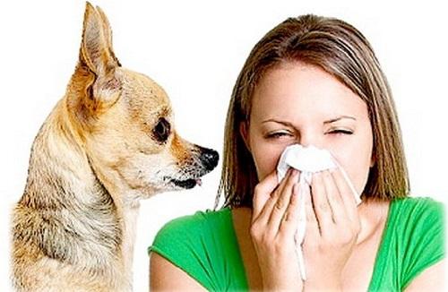 Бронхиальная астма. Оказание первой помощи