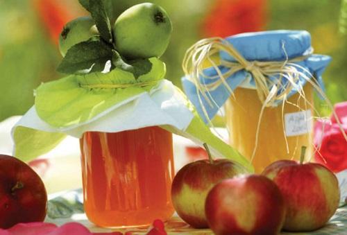 Яблочный уксус при варикозе – рецепт приготовления яблочного уксуса