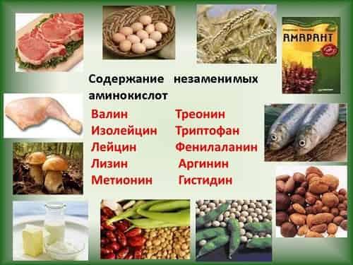 soderzhanie aminokislot v produktah
