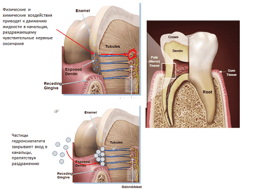 Dejstvie zubnoj pasty SPLAT