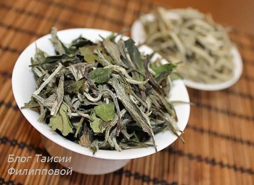Kitajskij belyj chaj